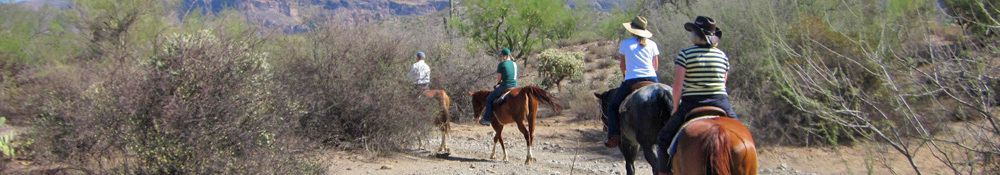 SaddleBrooke Ranch Horseback Riding Group